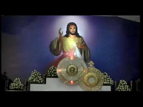 Fr  Dominic Valanmanal First Saturday bible Convention january  2017