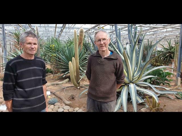 La cactuseraie de Creismeas à Guipavas [Juillet 2020]