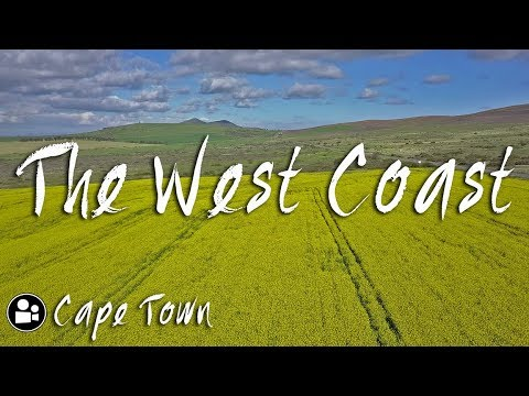 What's in Darling? | West Coast Flower Season  - Cape Town Travel Video
