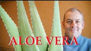 Aloe vera plante miraculeuse pour votre santé et votre peau .