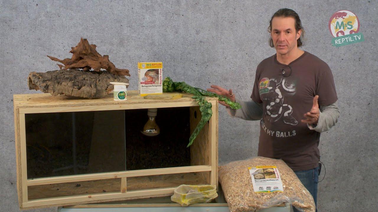 reptil tv folge 75 diy reptilien holz terrarium youtube. Black Bedroom Furniture Sets. Home Design Ideas