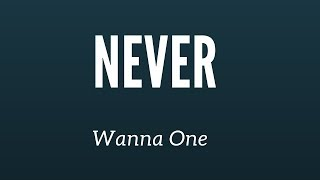Never - Wanna One (cover) | minergizer