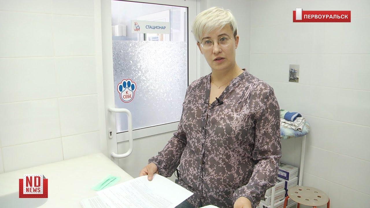 Работали не в тех масках – ветклинике грозит штраф в полмиллиона рублей