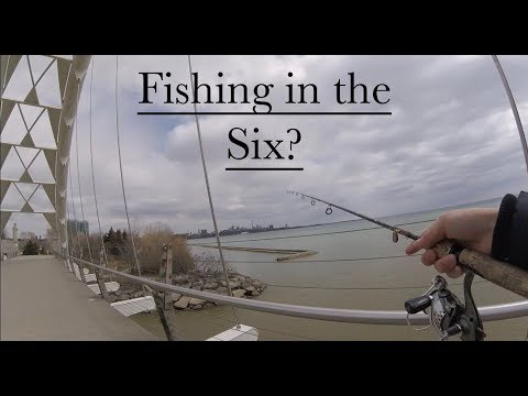 Exploring Toronto For Fishing Spots (What Did We Find)