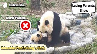 Adorable Panda Baby