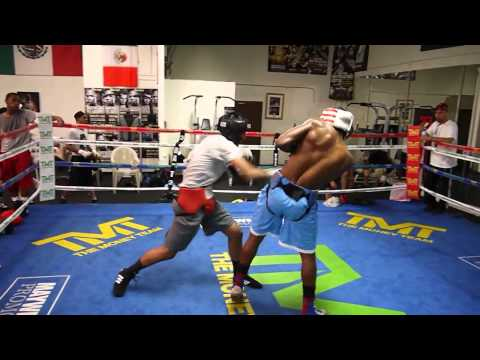 #2 ranked amateur Tim Lee sparring @ Mayweather Boxing Club