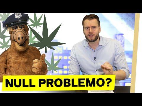 Cannabis bald LEGAL?