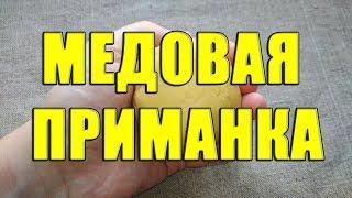 Медовая приманка для рыбалки своими руками. Супер приманка для мирной рыбы из меда и хлеба
