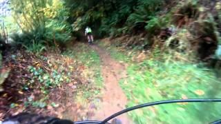 Portland Forest Park MTB