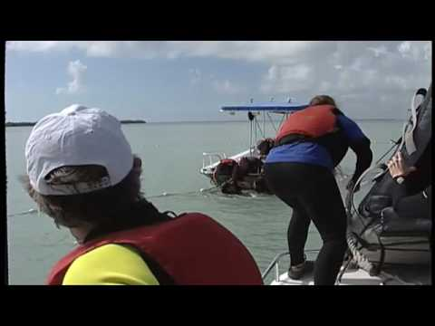 FAU Harbor Branch Institute: Sunshine Key