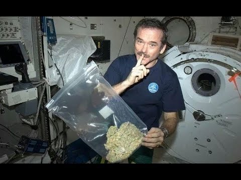 Scientists Say It Might Be Impossible To Get Stoned In Space