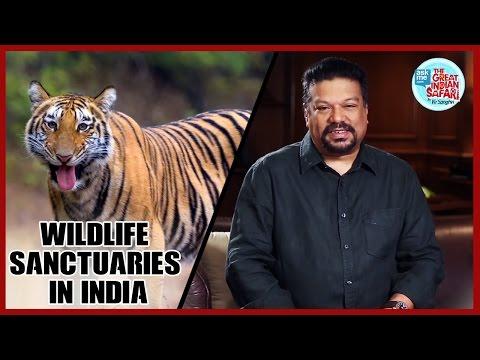Wildlife Sanctuary in India | National Parks in India| Vir Sanghvi