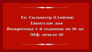 Еп. Сильвестр (Стойчев). 28.06.2020. Евангелие дня с толкованием