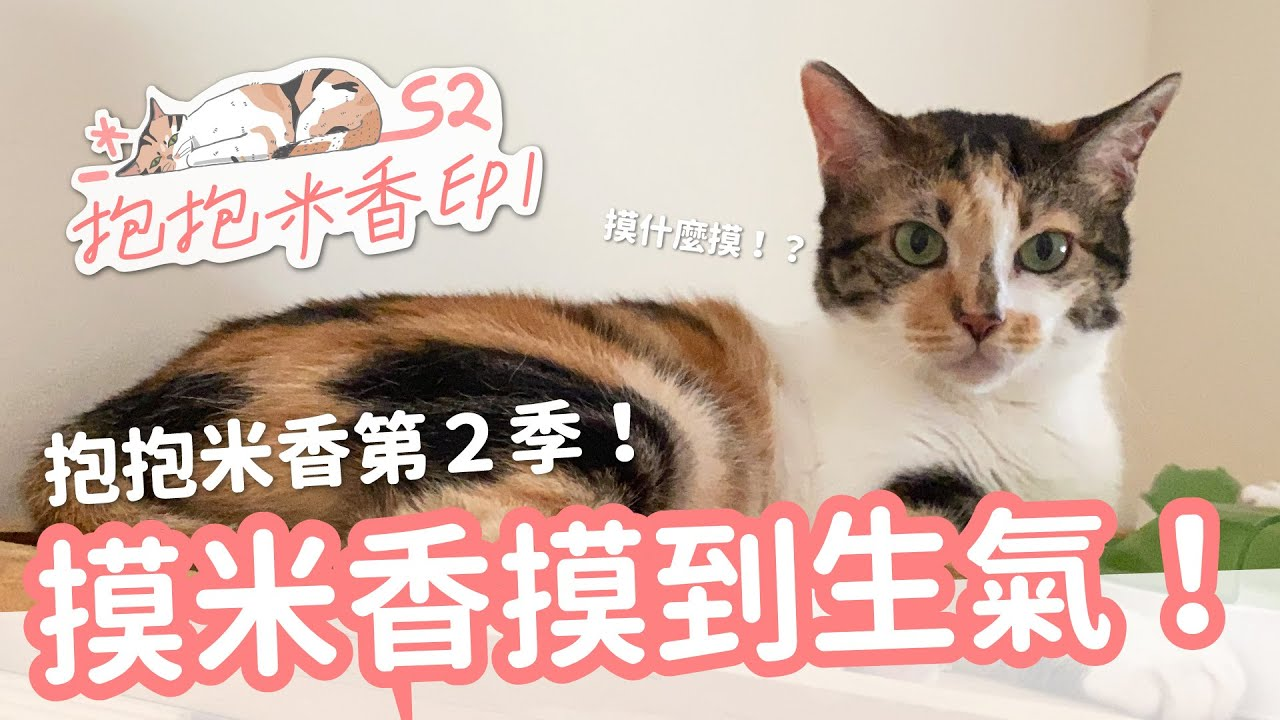 【抱抱米香S2 EP1】抱抱米香第二季!?一直摸米香摸到她生氣!
