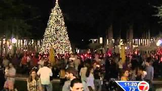 Village of Merrick Park Tree Lighting Ceremony WSVN 7 News Nov. 17 11.20 pm.wmv Thumbnail