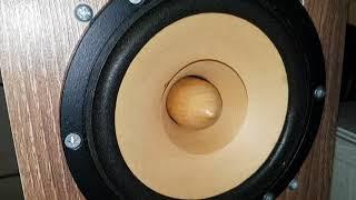 Sonido SFR-144 fullrange  in back loaded horn speaker testing 2