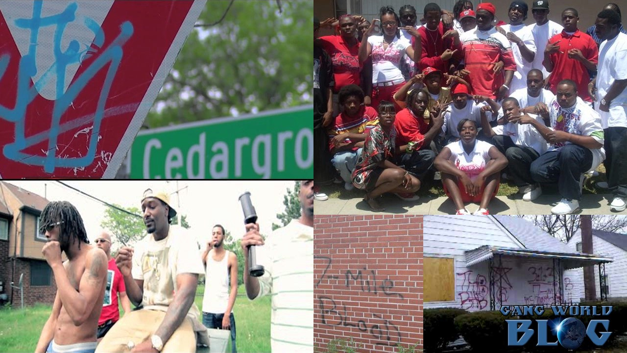 The Gangs of Detroit 6 Mile Chedda Grove, 6 Mile Bloods, Surenos, Latin  Counts, Rollin 60 Crips