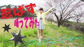 忍ばず踊ってみた!ワッショイニンジャ祭り!! http://www.toei.co.jp/...