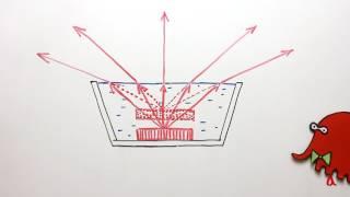 Преломление света   Физика в опытах и экспериментах
