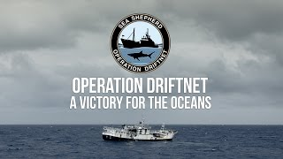 Operation Driftnet: Sea Shepherd Shuts Down Entire Illegal Fishing Fleet