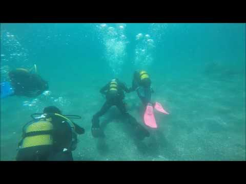 Scuba Diving in Malaga Spain