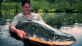 ARAPAIMA FISHING - AMAZON - HUGE ARAPAIMA