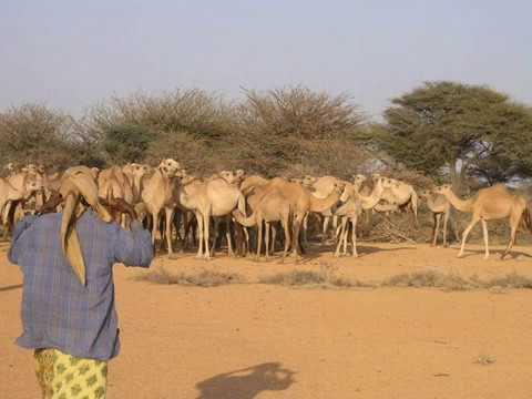 Somalia, Puntland, & Somaliland landscape pictures slideshow