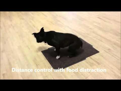Intermediate exercises