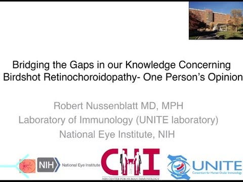 Strategies for Closing the Gaps- Robert Nussenblatt, MD, MPH
