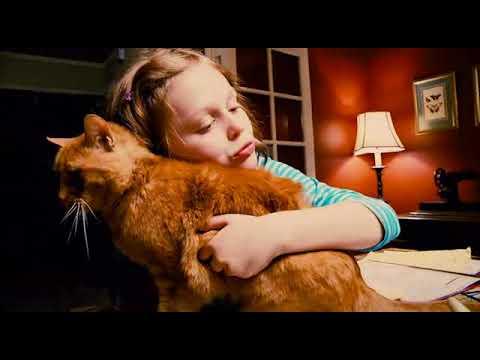Mockingbird 2014  film d'horreur vf