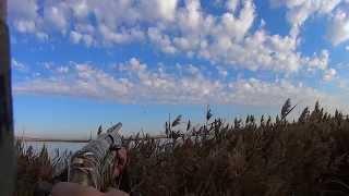 Охота на уток осень 2014(, 2014-09-22T13:56:12.000Z)