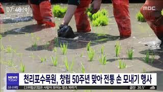 창립 50주년 천리포수목원, 전통 손 모내기/대전MBC