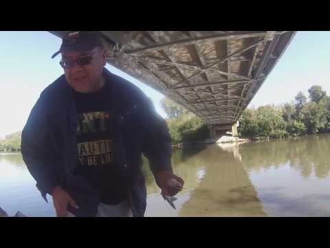 Cal-Sag  & Saganashkee Slough Fishing In Palos Ht, Pk Ill