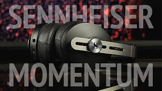 Обзор Sennheiser Momentum Wireless M3. Лучшие ANC наушники?