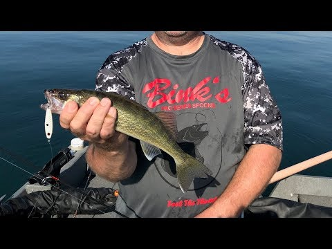 Dog Days Walleye At Bull Shoals / Bink's Spoons