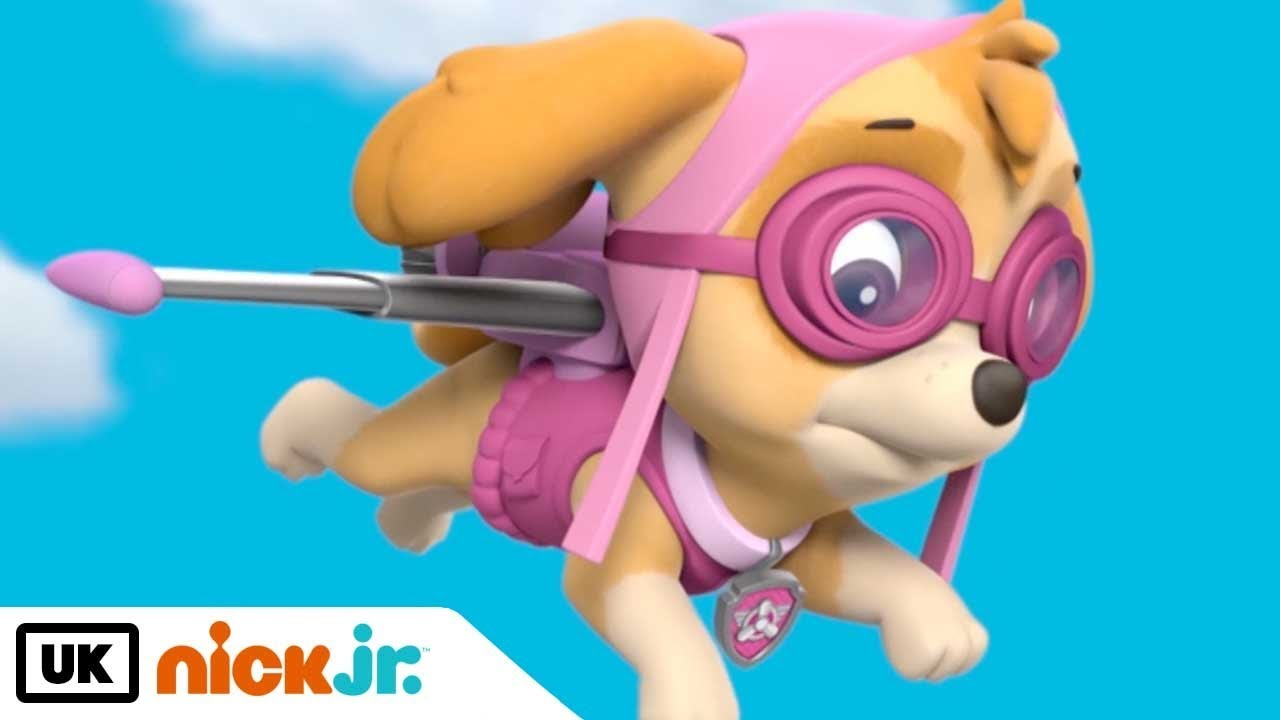 Paw Patrol | Meet: Skye! | Nick Jr  UK