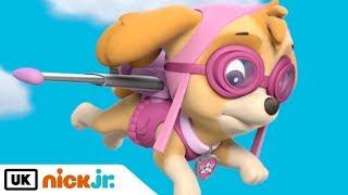 Paw Patrol | Meet: Skye! | Nick Jr. UK