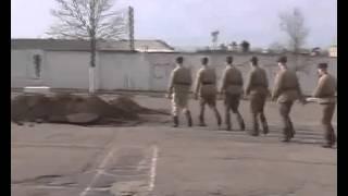 д ф  Дисбат в Беларуси