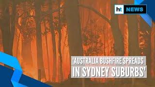Australia bushfire: New blazes break out as fire spreads to Sydney suburbs