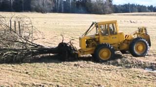 Lakatoš vytrhává strom