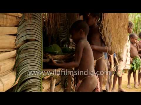 Tribes of the South Pacific: Vanuatu tribals of Melanesian culture