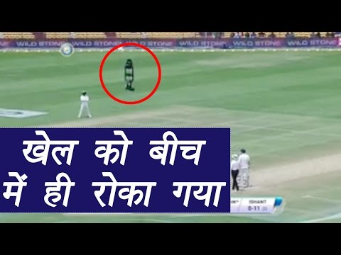India vs Australia 2nd Test Match: Spider cam interrupts live match in Bengaluru | वनइंडिया हिन्दी