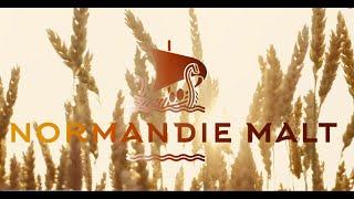 Le malt de blé par Normandie Malt