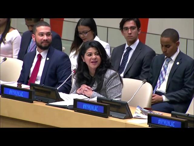 Entrega de Informes y Resoluciones a Naciones Unidas y gobiernos de República Dominicana y México.