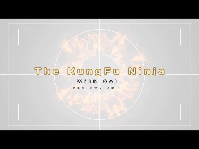 The Young Kungfu Ninja #1