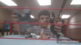 Brett Hart Vs HBK Vs Undertaker Championship Match