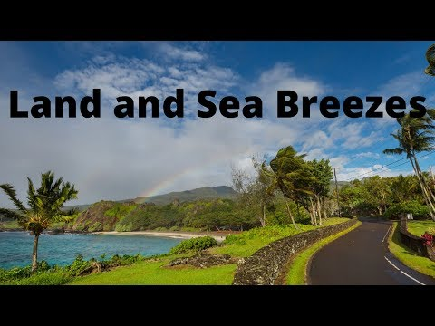 what-causes-land-and-sea-breezes?