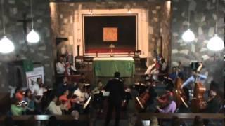 Tchaikovsky Serenata para cuerdas Op. 48 1 mov OSV- Liber Cuervos Director Invitado