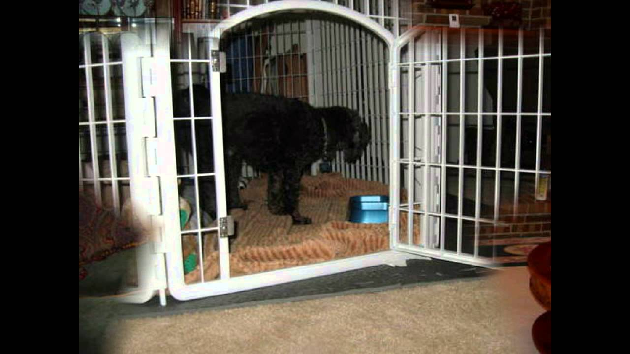 Pet Pen For Large Dogs