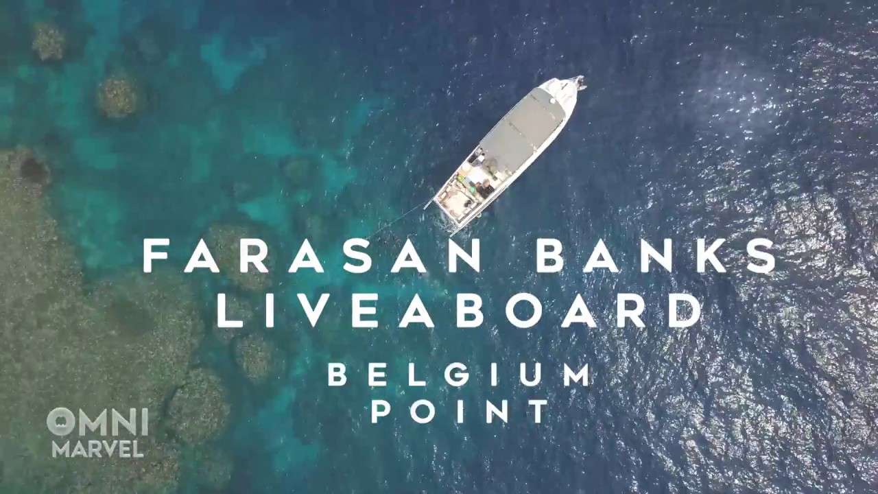 Omni Marvel Excusions Belgium Point Barracuda Farasan Banks